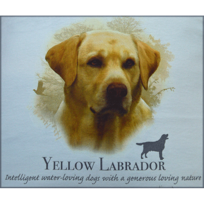 "Lady Remington Pillow 17""   Style 168  Yellow Lab"