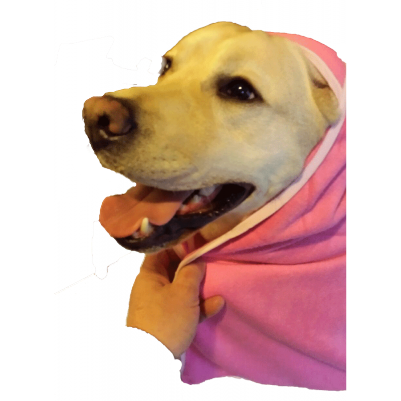 Terry Cotton Pet Towel - Style  LR 138 Pink