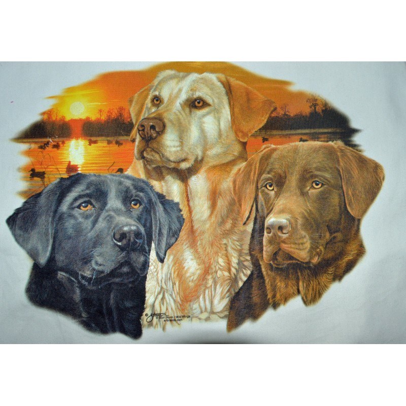 Lady Remington T-shirt  Style 113 Trio Lab  Storm