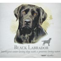 Lady Remington T-shirt Style 116 Black Lab